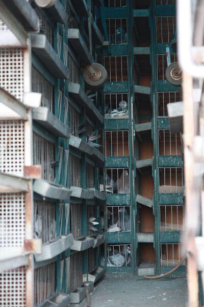 Koszowanie - 8 maja 2010